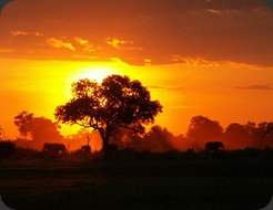 africa-photos-284