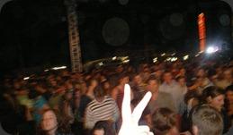 Synergy Crowd