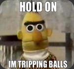 Tripping Balls_1c98a5_3904283