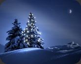 Beautiful-Christmas-Tree-Wallpaper